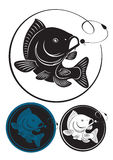 karp ryba ilustracja wektor