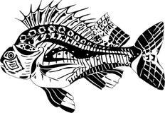 Karp ryba Obraz Royalty Free