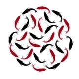 Karp, set koja karpie, czerwień i czerń, łowimy Ręka rysujący okrąg ryba Zdjęcia Stock