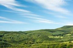 Karpackich gór lasu widok Fotografia Royalty Free