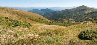Karpackie góry w późnym lecie Zdjęcia Stock