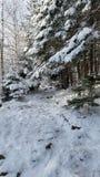 Karpacz-Fahrt Winter des Schnees weiße lizenzfreies stockbild