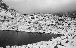 Karpaten- Berge auf einem nebeligen Tages-Trieb auf Schwarzweiss--fil Stockfotos