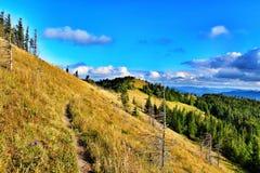 Karpaten Mountais, Ukraine Lizenzfreies Stockfoto