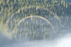 Karpaten und Nebel Stockfoto