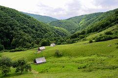 Karpatenberge der Bezirk Sibiu Rumänien Transylv Lizenzfreie Stockbilder