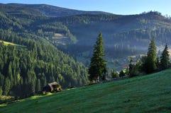 Karpatenberge und Koniferenwald, alte Hütte Stockbilder