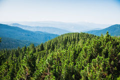 Karpathian highlands Royalty Free Stock Photography