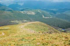 Karpathian średniogórza Zdjęcie Stock