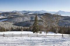 Karpatisch landschap Royalty-vrije Stock Afbeelding