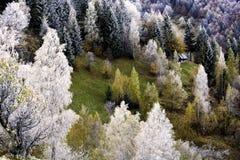 Karpatische berg op de herfst met whitefrost - Roemenië Stock Afbeeldingen