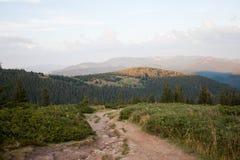 Karpatische bergen Stock Afbeeldingen