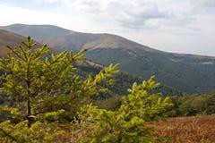 Karpatische bergen Stock Foto's