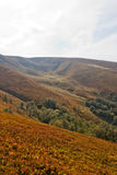 Karpatische bergen Royalty-vrije Stock Afbeelding
