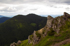Karpatische bergen Stock Fotografie