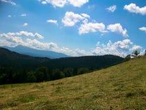 Karpatische bergen Stock Foto