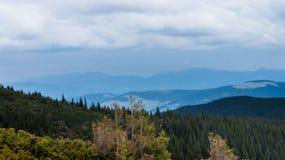 Karpatische bergen Royalty-vrije Stock Foto's