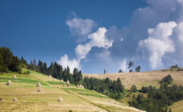 Karpatische bergen, de Oekraïne Stock Afbeeldingen
