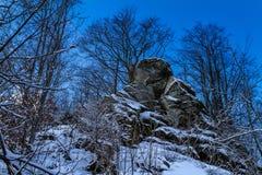 Karpatische Bergen in de winter Royalty-vrije Stock Fotografie