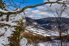 Karpatische Bergen in de winter Stock Afbeeldingen
