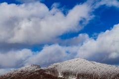 Karpatische Bergen in de winter Royalty-vrije Stock Foto's
