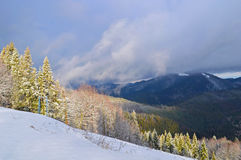Karpatische Bergen in de winter Royalty-vrije Stock Afbeeldingen