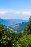 Karpatische Bergen in de zomertijd royalty-vrije stock afbeeldingen