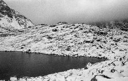 Karpatische bergen op een mistige dagspruit op zwart-witte fil Stock Foto's