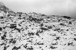 Karpatische bergen op een mistige dagspruit op zwart-witte fil Royalty-vrije Stock Foto