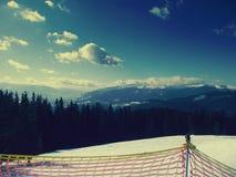 Karpatische bergen ukraine Vakantie Duizend bomen De stijging en glanst Vrede Liefde Stock Afbeelding