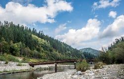 Karpatische bergrivier met oude brug Royalty-vrije Stock Foto's