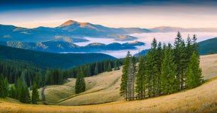 Karpatische bergvallei Stock Afbeeldingen