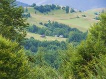 Karpatische bergvallei Stock Afbeelding