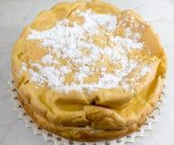 Karpatische cake. Royalty-vrije Stock Afbeelding