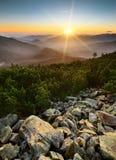 Karpatische zonsopgang Royalty-vrije Stock Fotografie