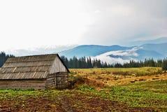 Βουνό που καλύπτονται από την ομίχλη, και δέντρα, με το ξύλινο σπίτι. Στοκ εικόνες με δικαίωμα ελεύθερης χρήσης
