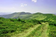 Βουνά, στον ευχάριστο μπλε ουρανό, που καλύπτεται από τα δέντρα. Στοκ Εικόνες