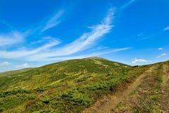 Βουνά, στον ευχάριστο μπλε ουρανό, που καλύπτεται από τα δέντρα. Στοκ Φωτογραφίες