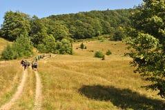 Подъем Hikers на малый след. Стоковые Фото