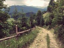 Karpaty jest malowniczymi miejsc górami w Ukraina obraz stock