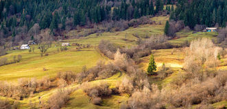 Karpaty Royalty Free Stock Photography