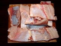 Karpfen, Fisch Lizenzfreies Stockfoto