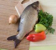 Karpfenfische stockfoto