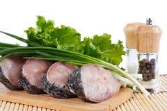 karpia fillet ryba świeży surowy Fotografia Stock