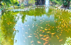 Karpiowy jezioro w parku narodowym Obrazy Stock