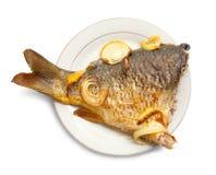 karpiowy rybiego talerza biel zdjęcie stock