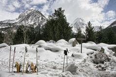 Karple i narciarscy słupy Obrazy Royalty Free