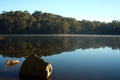 Karri Valley Lake - South Western Australia. Early morning mist rises from Karri Valley Lake in Western Australia Royalty Free Stock Photo