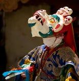 Танцор в маске выполняя вероисповедную танцульку Cham в Ladakh, внутри стоковые изображения rf