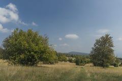 Karst de la Slovaquie dans le jour chaud d'été Image libre de droits